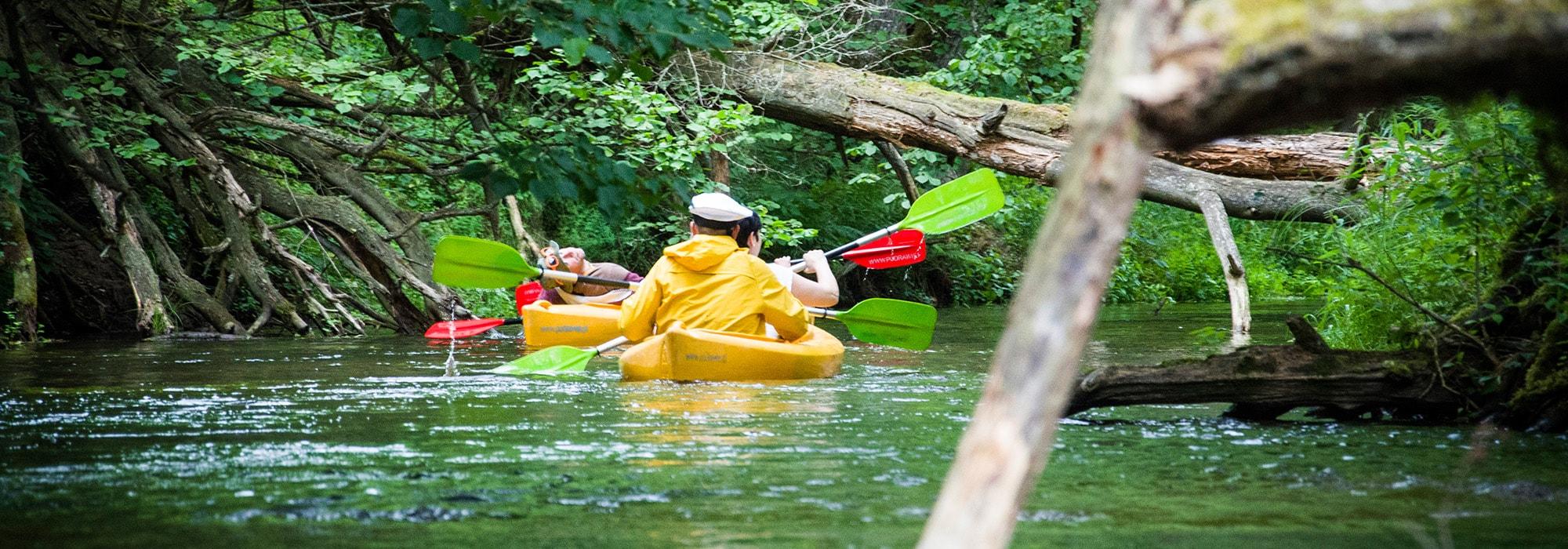 Korytnica - zdjęcie rzeki