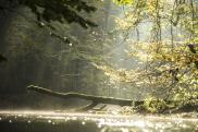 Drawa - najpiękniejsze zdjęcia szlaku