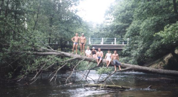 Zdjęcie na drzewie w Bogdance